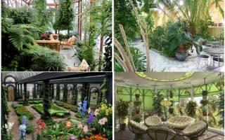 Дизайн зимнего сада в частном доме