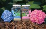 Удобрения для гортензии весной