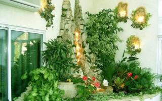 Свисающие растения