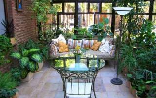 Тенелюбивые цветущие комнатные растения