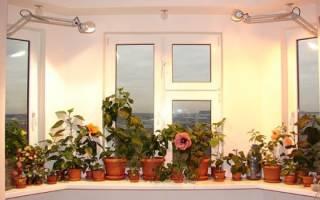 Искусственный свет для растений